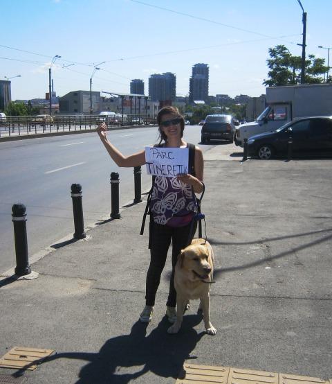 eu şi câinele călător